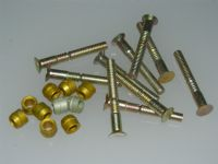 "10 x 1/4"" Pin Rivets Countersunk With Rivnuts Length 1 13/16"" [H6]"